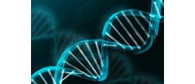 Мы говорим «Геномная регистрация» – подразумеваем соблюдение общепризнанных прав и свобод человека и гражданина!